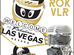 ROK CUP USA OFFERS BRIGGS DRIVERS FREE USE OF VORTEX VLR ENGINE AT ROK THE RIO